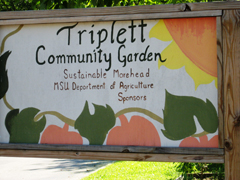 [Photo 2: Signage as you enter the Triplett Community Garden.]