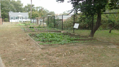 Hud archives senior residents enjoy living golden years in columbia south carolina historic for North carolina vegetable gardening