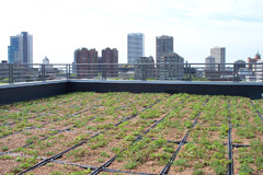 [Photo 3: Building rooftop with garden]